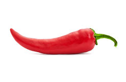 Single red pepper Royalty Free Stock Image