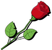 Single red rose. This is a vector illustration of a single red rose Stock Photography