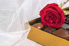 Single Red Rose, a Box of Gourmet Chocolates on White Tulle Fabric Background Royalty Free Stock Photos