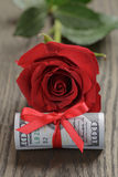 Single red rose and bunch of dollar bills Stock Image