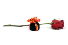 Single red rose and gift box. White background Stock Images