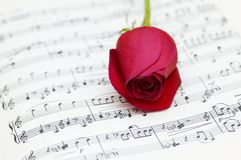 Single red rose  on musical notes page. Single red rose on musical notes page Stock Photography