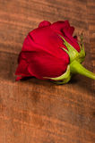 Single red rose on table Imagens de Stock