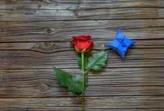 Single red rose with a Valentines gift Stock Image