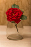 Single red rose on a wooden background. Royalty Free Stock Photo