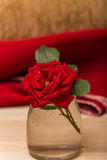 Single red rose on a wooden background. Stock Image