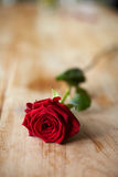 Single Red Rose On Wooden Surface Royalty Free Stock Photos
