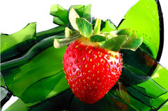 Single red strawberry. On broken green beer bottle Royalty Free Stock Photo