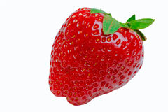 Single red strawberry isolated Stock Photography