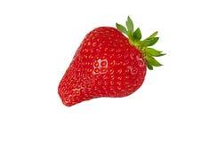 Single red strawberry Stock Photos