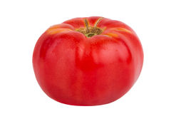 Single red tomato isolated on white background Stock Photos