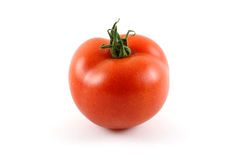 Single Red Tomato royalty free stock images