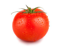 Single red tomato with water drops Stock Images