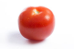 A single red tomato on a white background Stock Photography