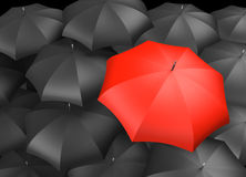 Single red umbrella with many black umbrellas Stock Images