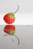 Single reflected strawberry Stock Images