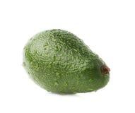 Single ripe avocado fruit isolated Royalty Free Stock Image