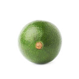 Single ripe avocado fruit isolated Stock Photography