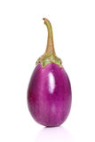 Single Ripe eggplant Royalty Free Stock Photo