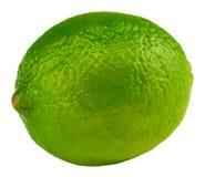 Single ripe lime isolated on white background.  Stock Image