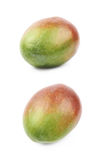 Single ripe mango fruit isolated Royalty Free Stock Images