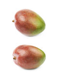 Single ripe mango fruit isolated Stock Photos