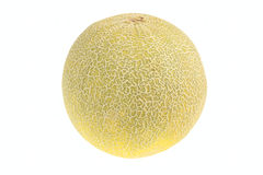 Single ripe melon Stock Photo