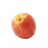 Single ripe nectarine isolated Royalty Free Stock Photography