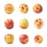 Single ripe nectarine isolated Stock Images