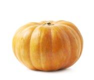 Single ripe orange pumpking isolated Royalty Free Stock Photo