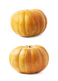 Single ripe orange pumpking isolated Royalty Free Stock Image