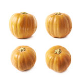 Single ripe orange pumpking isolated Stock Photo