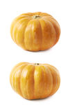 Single ripe orange pumpking  Royalty Free Stock Photography