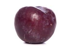 Single ripe plum Royalty Free Stock Image
