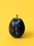 Single ripe plum Royalty Free Stock Images