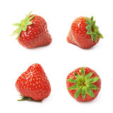 Single ripe red strawberry isolated Royalty Free Stock Image