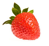 Single ripe strawberry Stock Image
