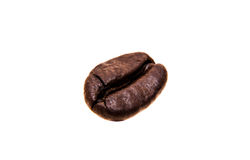 Single roasted coffee bean Royalty Free Stock Photography