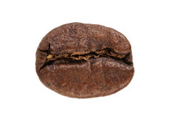 Single roasted coffee bean isolated on a white Stock Photography
