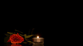 Single romantic orange rose with a burning candle Royalty Free Stock Images