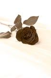 Single rose på ett underlag i svartvitt Arkivfoton