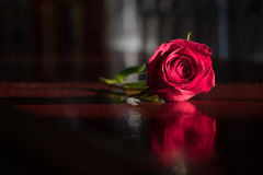 Single rose resting on a darkened bar Royalty Free Stock Images