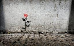 Single rose stencil graffitti on wall in London Royalty Free Stock Photos