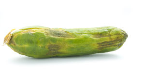Rotten cucumber Royalty Free Stock Images