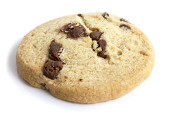 Single round chocolate chip shortbread biscuit. On white. Stock Images