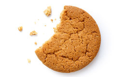 Single round ginger biscuit. Royalty Free Stock Photos