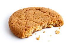 Single round ginger biscuit. Royalty Free Stock Images