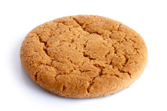 Single round ginger biscuit. Royalty Free Stock Image