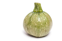Single round green courgette Stock Photography