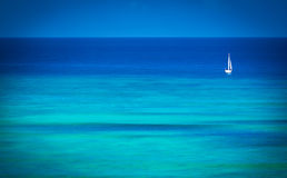 Single Sailboat on blue ocean Stock Photography